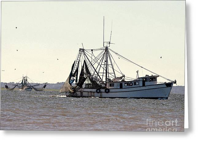 Al Powell Photography Usa Greeting Cards - Shrimping Season - Digital Art Greeting Card by Al Powell Photography USA