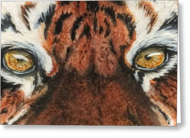 The Tiger Paintings Greeting Cards - Sib Tig Eye Greeting Card by Laurie Bath