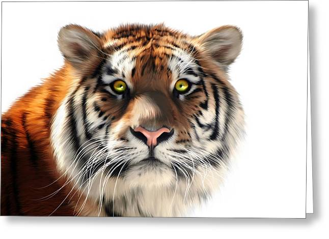 Altaica Greeting Cards - Siberian Tiger on White Greeting Card by Julie L Hoddinott