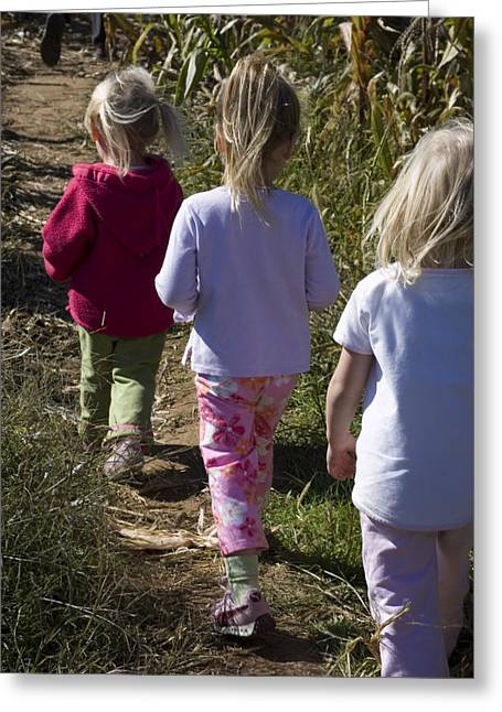 2-3 Years Greeting Cards - Siblings Walk Through A Corn Maze Greeting Card by Stacy Gold