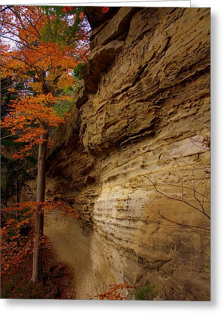 Indiana Landscapes Greeting Cards - Side Winder Greeting Card by Ed Smith
