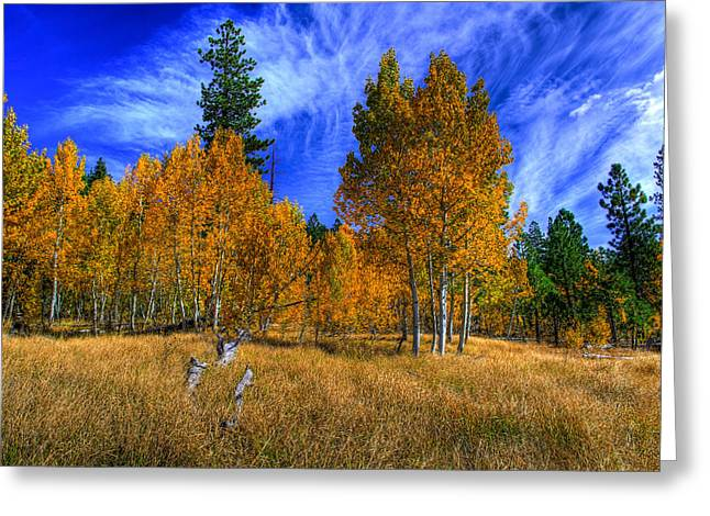 Limited Colors Greeting Cards - Sierra Nevada Fall Colors Lake Tahoe Greeting Card by Scott McGuire