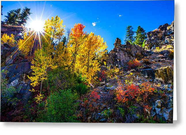 Sierra Nevada Fall Colors Lassen County California Greeting Card by Scott McGuire