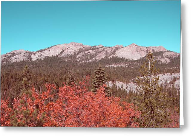 Mountain Road Greeting Cards - Sierra Nevada Mountain Greeting Card by Naxart Studio