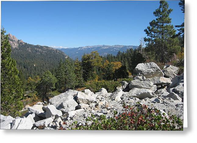 Pines Greeting Cards - Sierra Nevada Mountains 1 Greeting Card by Naxart Studio