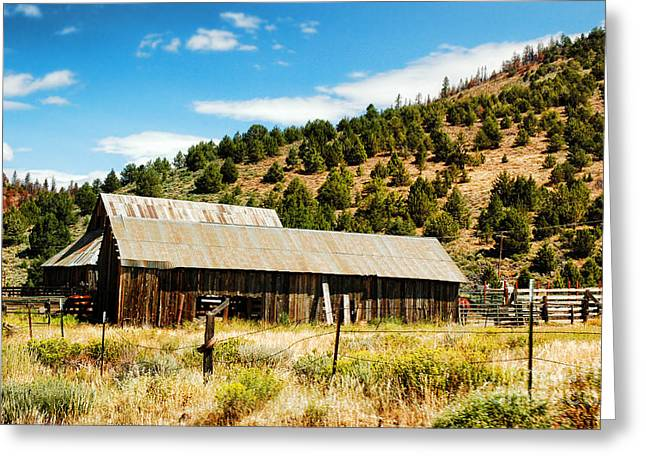 Ranch Photographs Greeting Cards - Sierra Nevada Ranch Greeting Card by HD Connelly