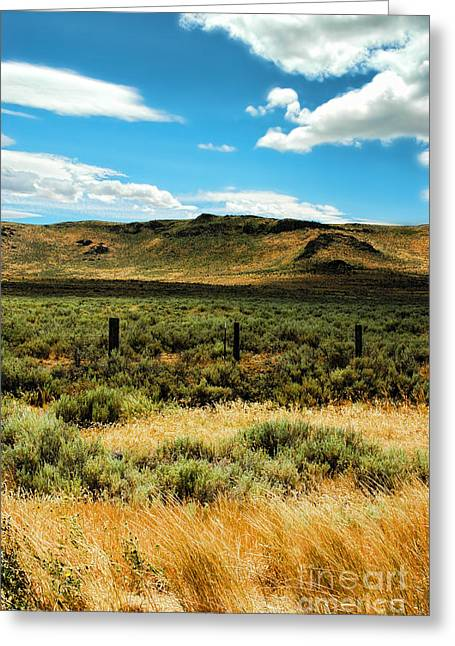 Brown Grass Greeting Cards - Sierraville CA Greeting Card by HD Connelly