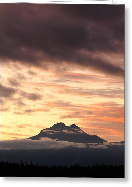 Matanuska Greeting Cards - Signs Of Life Portrait Greeting Card by Ron Day
