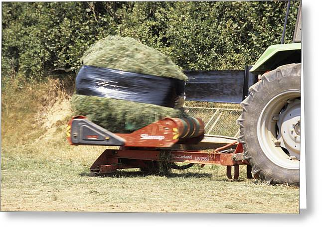 Silage Wrapping Greeting Card by David Aubrey