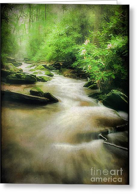 Beautiful Creek Greeting Cards - Silence Greeting Card by Darren Fisher