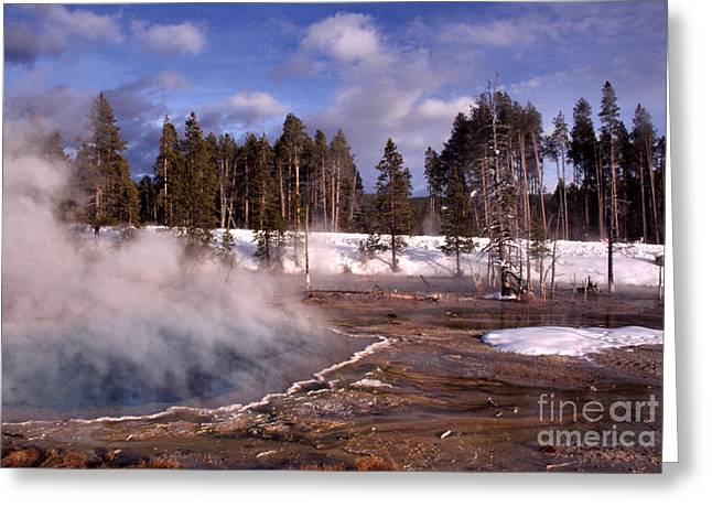 Super Volcano Greeting Cards - Silex Spring Yellowstone National Park Greeting Card by Thomas R Fletcher