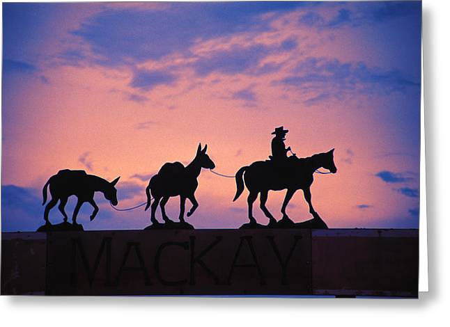 Journeys End Greeting Cards - Silhouette Of Donkey Train Statue Greeting Card by Corey Hochachka