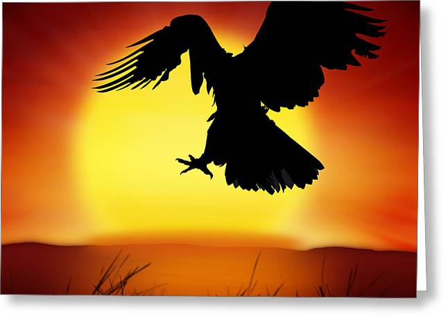Twilight Views Greeting Cards - Silhouette Of Eagle Greeting Card by Setsiri Silapasuwanchai