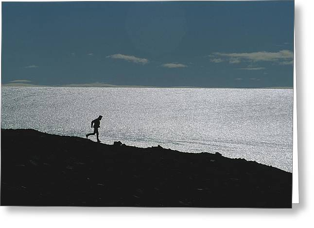 Jogging Greeting Cards - Silhouette Of Man Jogging Past A Bare Greeting Card by Gordon Wiltsie