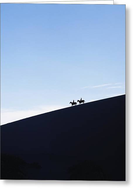 Silhouettes Of Horses Greeting Cards - Silhouetted Horse Riders At Dusk On A Greeting Card by Axiom Photographic