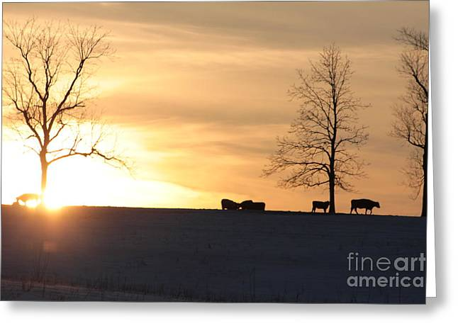 Best Sellers -  - Grazing Snow Greeting Cards - Silhouettes Greeting Card by Melissa Sparks