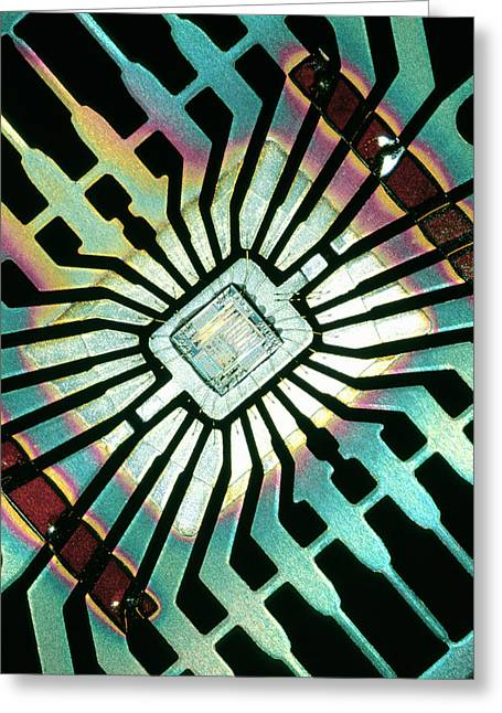 Hardware Greeting Cards - Silicon Chip Greeting Card by Pasieka