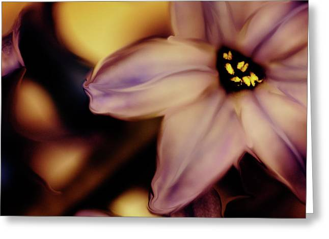 Floral Digital Art Greeting Cards - Silky Pink Petals Greeting Card by Bonnie Bruno