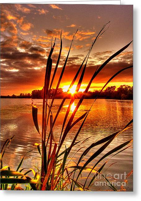 Kim Mixed Media Greeting Cards - Silky Sunset Greeting Card by Kim Shatwell-Irishphotographer