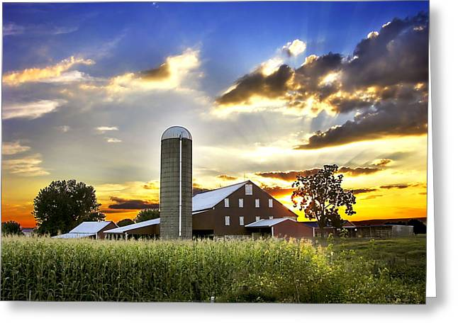 Cornfield Greeting Cards - Silo, Barn, And Cornfield Of An Greeting Card by Amy White & Al Petteway