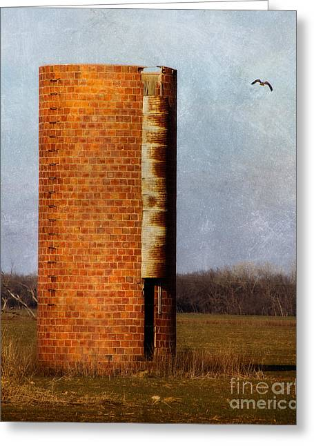 Hawk Creek Greeting Cards - Silo Greeting Card by Lana Trussell
