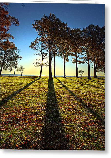 Silouette Greeting Cards - Silouettey Greeting Card by Phil Koch