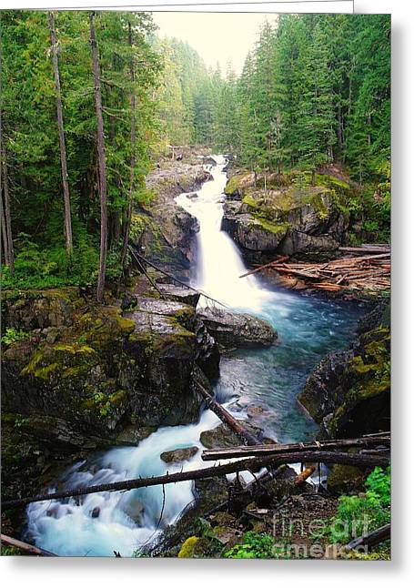 Falling Water Creek Greeting Cards - Silver Falls Full View  Greeting Card by Jeff  Swan