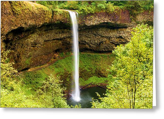 Silver Falls State Park Greeting Cards - Silver Falls South Falls Greeting Card by Adam Jewell