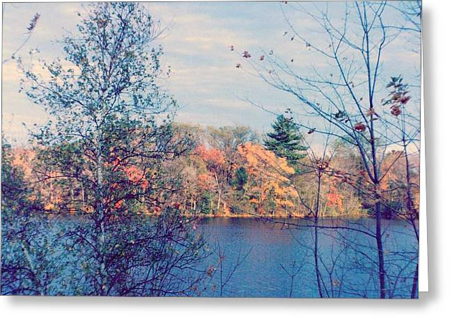 Grafton Ma Greeting Cards - Silver Lake in Fall Greeting Card by Debbie Wassmann