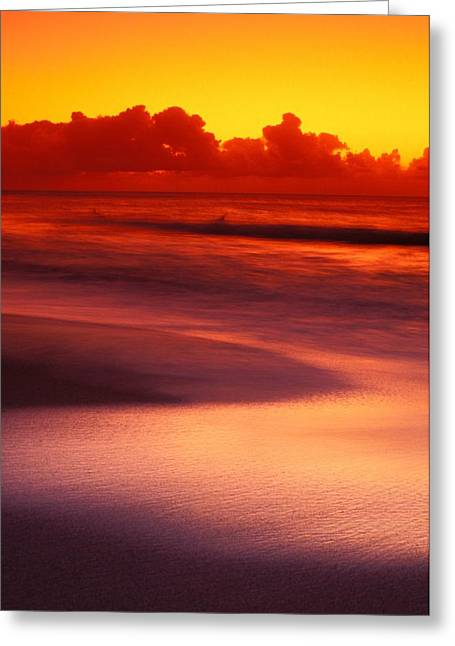 Vince Greeting Cards - Silver Reflections Greeting Card by Vince Cavataio - Printscapes