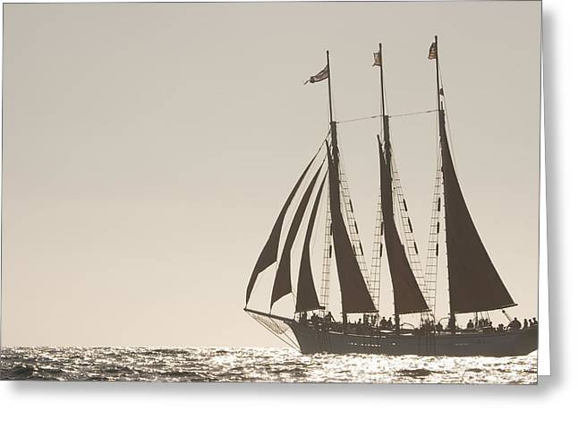 Tall Ships Greeting Cards - Silver Seas Greeting Card by Cliff Wassmann