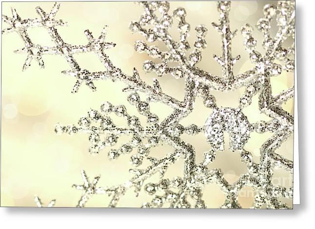 Silver snowflake Greeting Card by Sandra Cunningham
