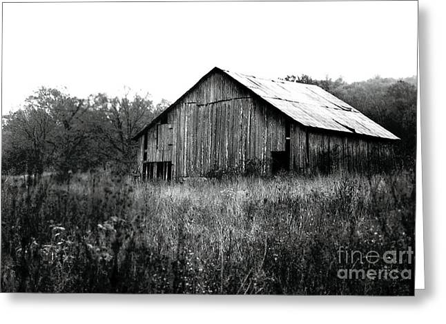 Tin Roof Greeting Cards - Silvery Vintage Barn Greeting Card by Rebecca Brittain