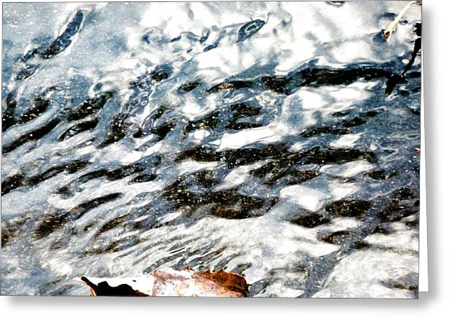 Abstract Water And Fall Leaves Greeting Cards - Silvery Water Greeting Card by Beth Akerman