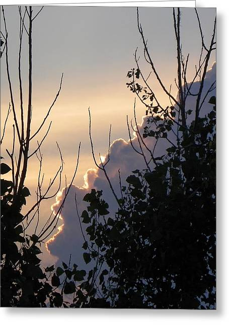 Sunset Prints Greeting Cards - Simple Beauty Greeting Card by Christy Patino