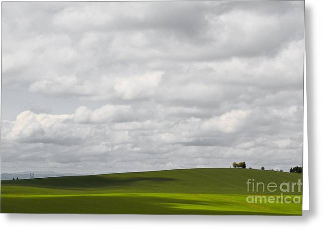 Wine Reflection Art Greeting Cards - Simple Field Greeting Card by Andrea Hazel Ihlefeld