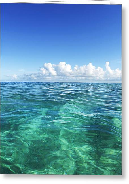 Vince Greeting Cards - Simple Ocean 1 Greeting Card by Vince Cavataio - Printscapes