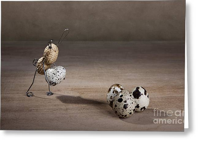 Quail Greeting Cards - Simple Things Easter 08 Greeting Card by Nailia Schwarz