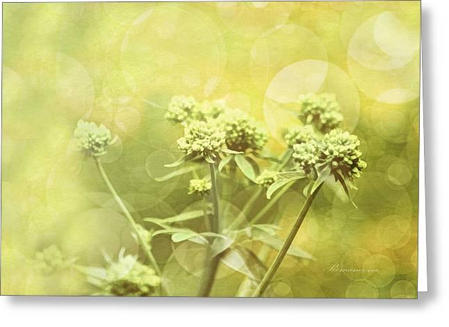 Conceptual Greeting Cards - Simplicity Greeting Card by Georgiana Romanovna