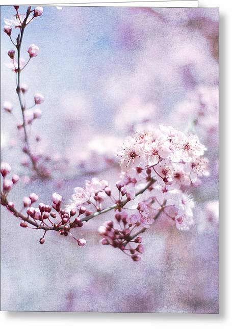 Pink Blossoms Greeting Cards - Sing To Me Greeting Card by Rebecca Cozart