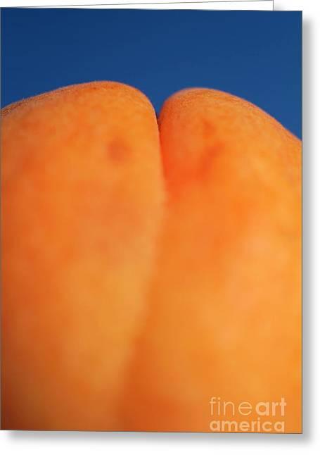 Single Ripe Apricot Greeting Card by Sami Sarkis