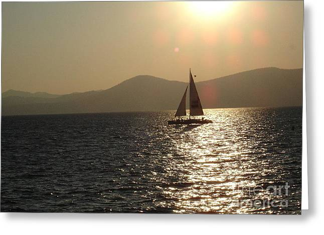 Single Sailboat Greeting Card by Silvie Kendall