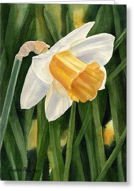 Watercolor! Art Greeting Cards - Single Yellow Daffodil Greeting Card by Sharon Freeman