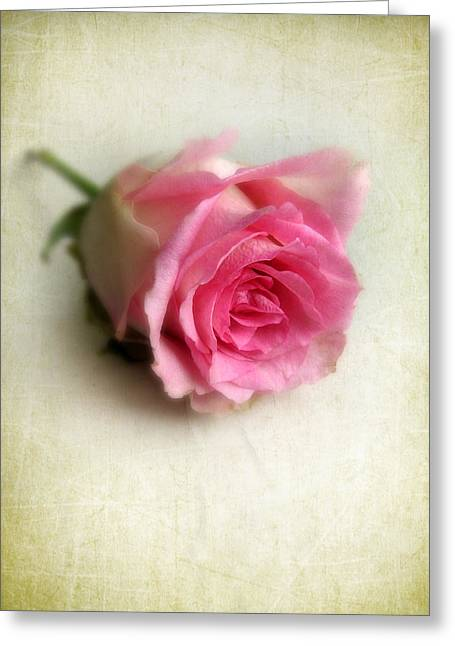 Texture Floral Greeting Cards - Singular Greeting Card by Jessica Jenney