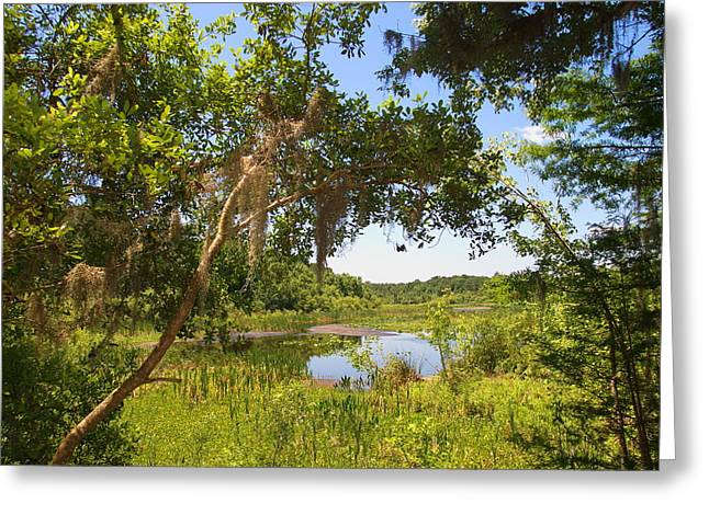 Sink Hole Greeting Cards - Sink hole lake Greeting Card by Luis Lugo