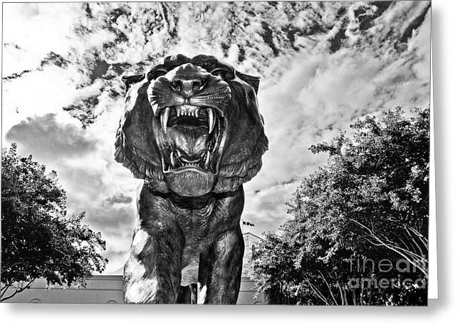 Fighting Tigers Greeting Cards - Sir Mike Greeting Card by Scott Pellegrin