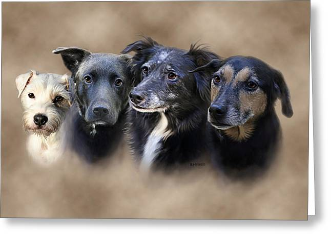 Dog Portraits Digital Art Greeting Cards - Siss Buddies Greeting Card by Barbara Hymer
