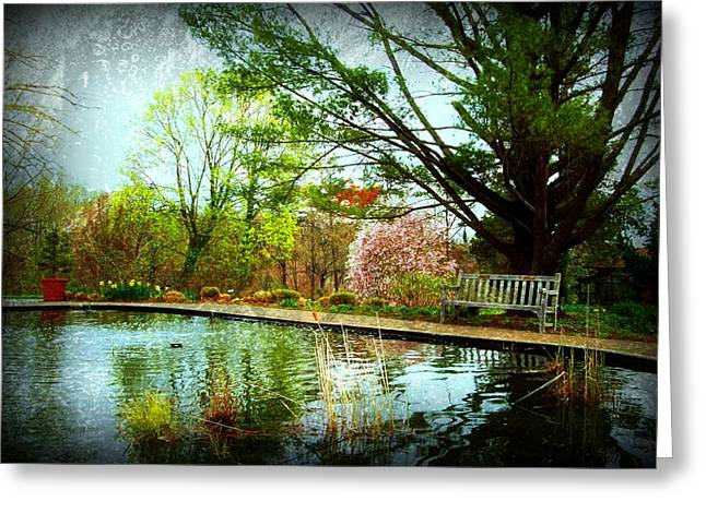 Park Benches Greeting Cards - Sit And Ponder - Deep Cut Gardens Greeting Card by Angie Tirado