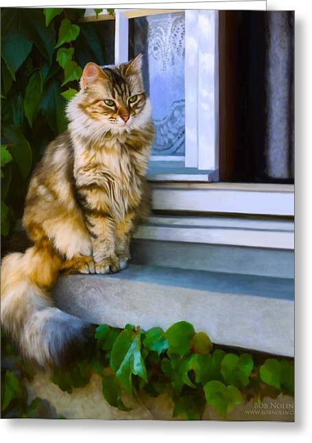 Cobalt Blues Greeting Cards - Sitting Pretty Greeting Card by Bob Nolin