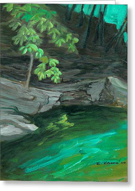 Ithaca Greeting Cards - Six Mile Creek Ithaca New York Greeting Card by Ethel Vrana